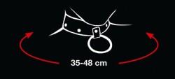 Collar Hartjes 2492016 3