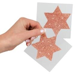 Rosé Gouden Ster Tepelsticker 700568