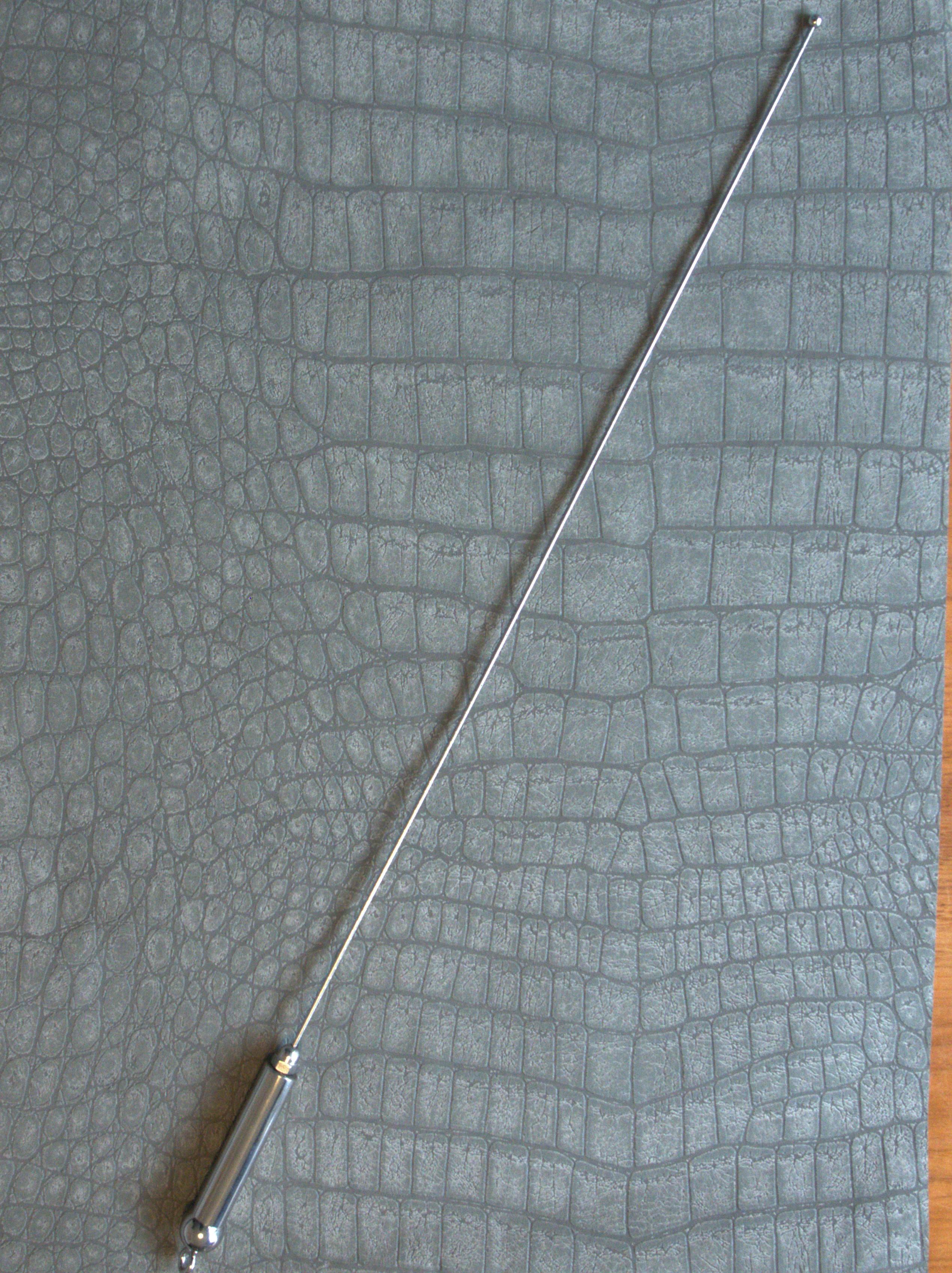 Verenstaal cane met RVS bol 116