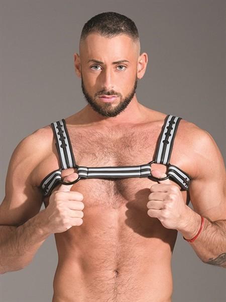 Bulldog harness 348770