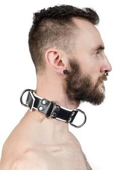Collar 610640 2